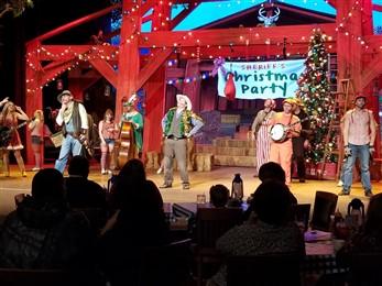 Smoky Mountain Christmas stage show